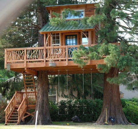 tree house from kate schnyder